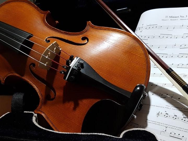 violin1 (2).jpg
