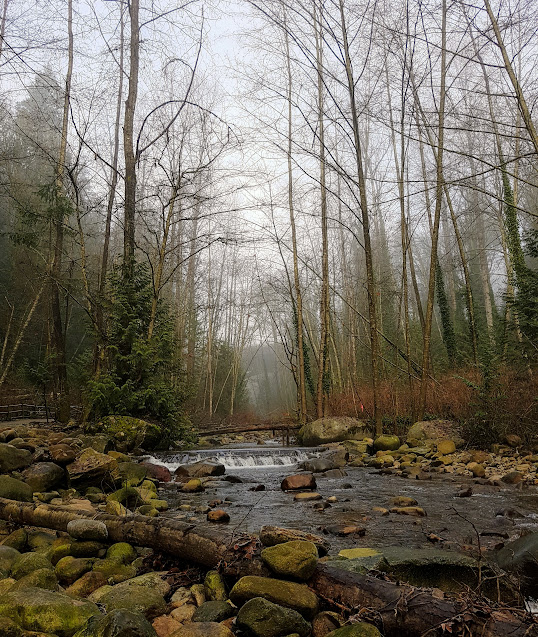 Mosquito Creek, North Vancouver