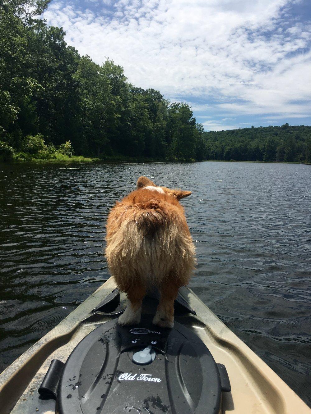 Quillen butt Kayak.jpg