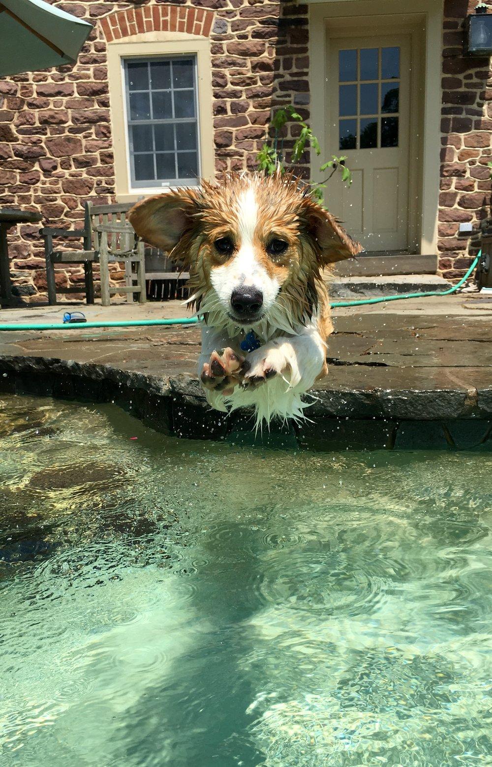 Quillen in the pool.jpg