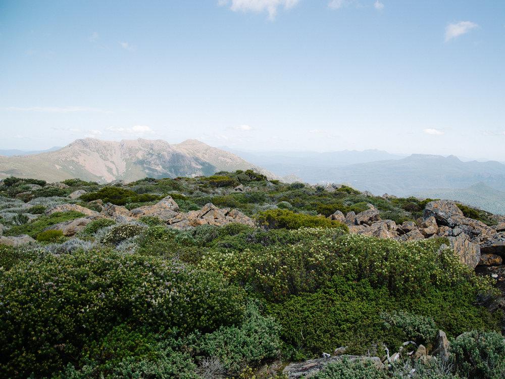 Florentine Peak View-1.jpg