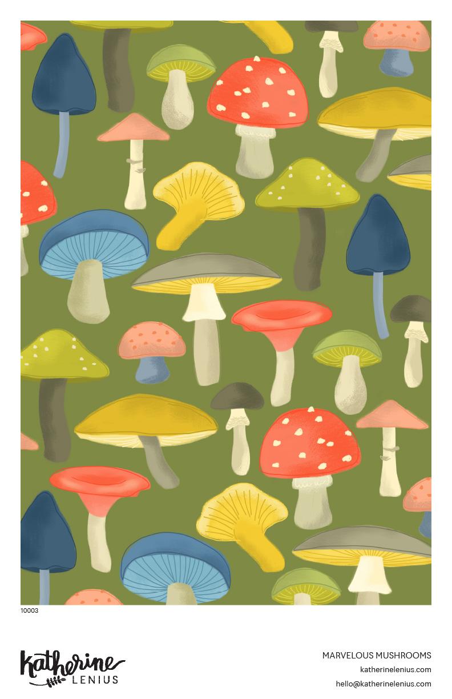 10003_Marvelous Mushrooms copy.jpg