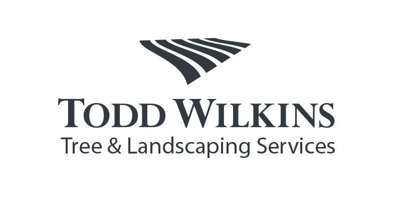 Todd Wilkins Tree and Landscaping Services, Mont Vernon, New Hampshire