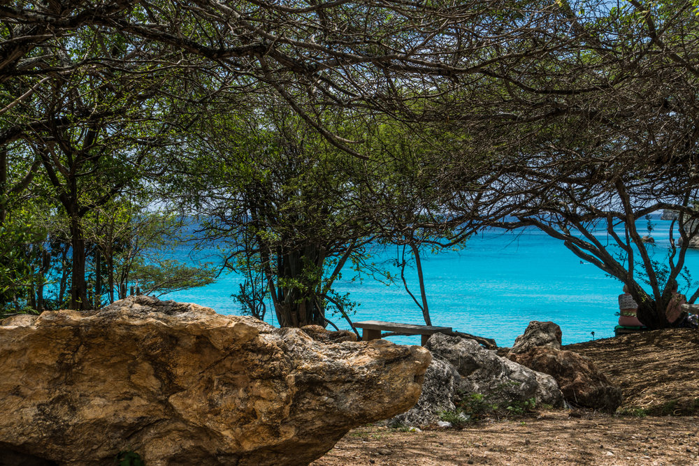 Grote Knip (Playa Abou)