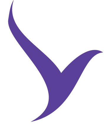 volar_logo color_.png