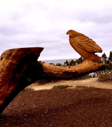wooden_bird.jpg