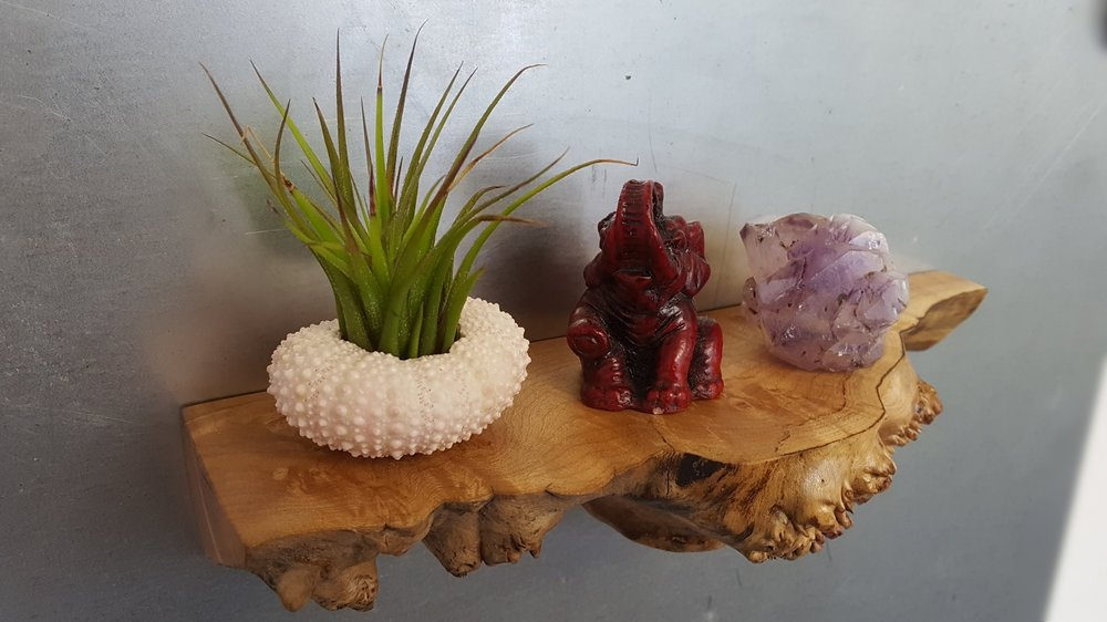 "Magnetic floating shelves, like this one named ""Snap Dragon"", are one of our unique creations.  We also sell air plants, gems and minerals.  The elephant is ours ;)"