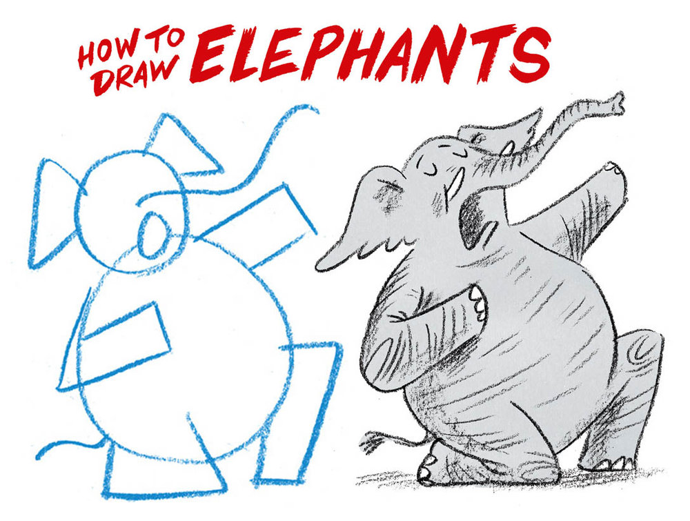 how to draw elephants - abc splash videos (external link)
