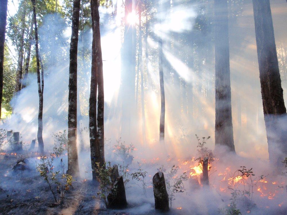 Fire Sun Cool Light.JPG