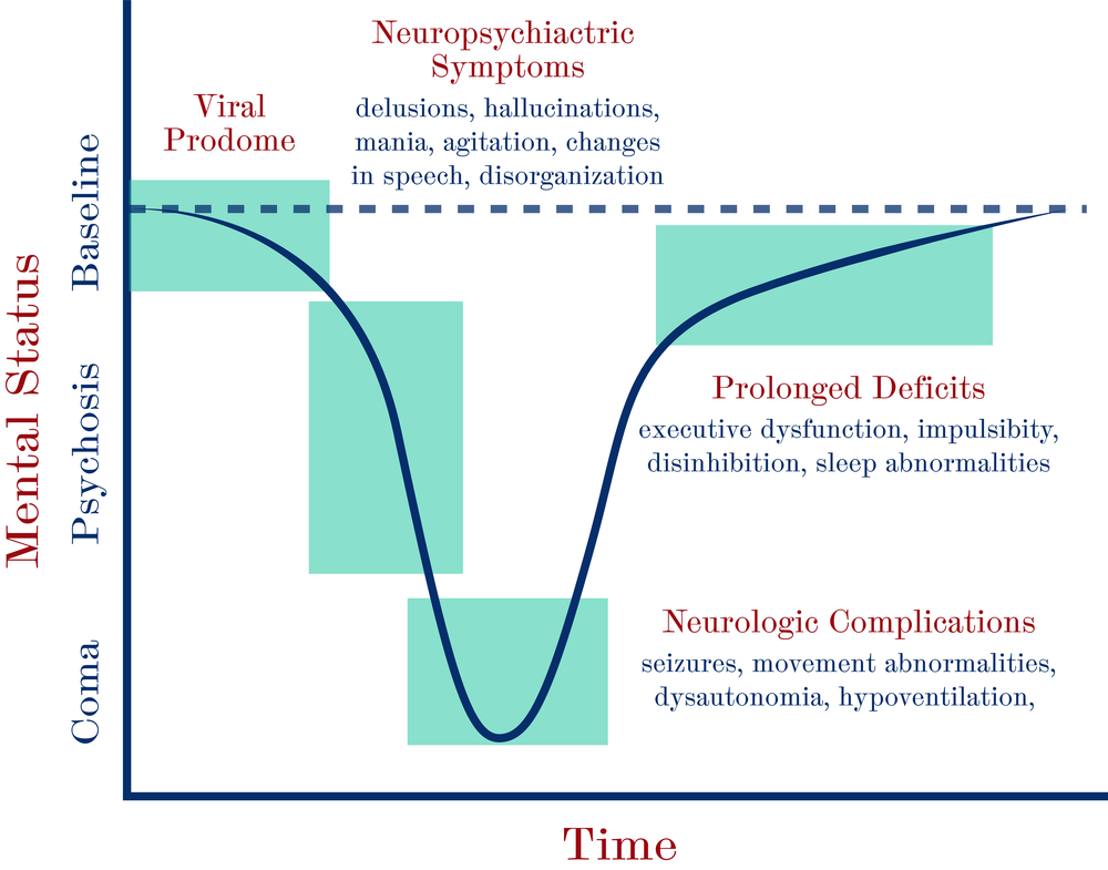 Figure 1 : Four phases of illness in anti-NMDA receptor encephalitis.