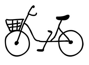 bike 300.jpg