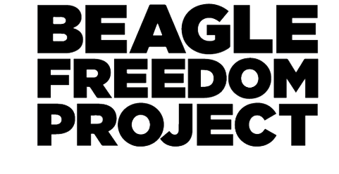 https://beaglefreedomproject.nationbuilder.com/donate