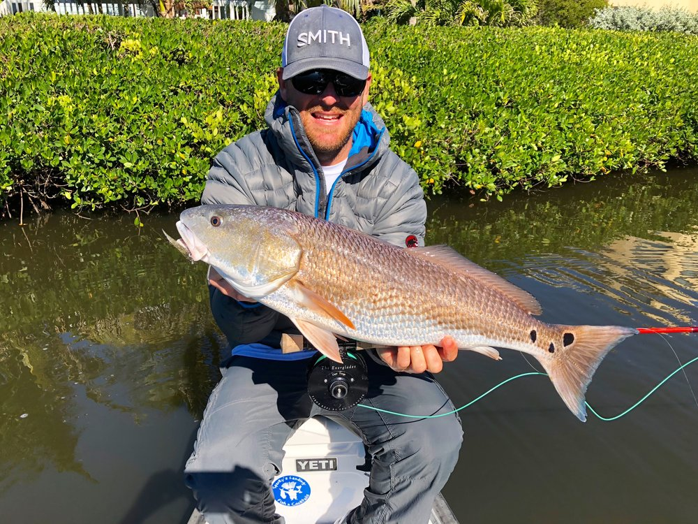 Red Fish On Fly