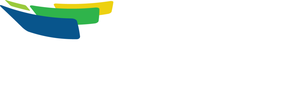 Enovation Analytics White Logo  Colored Flag Outlines_2017 copy.png