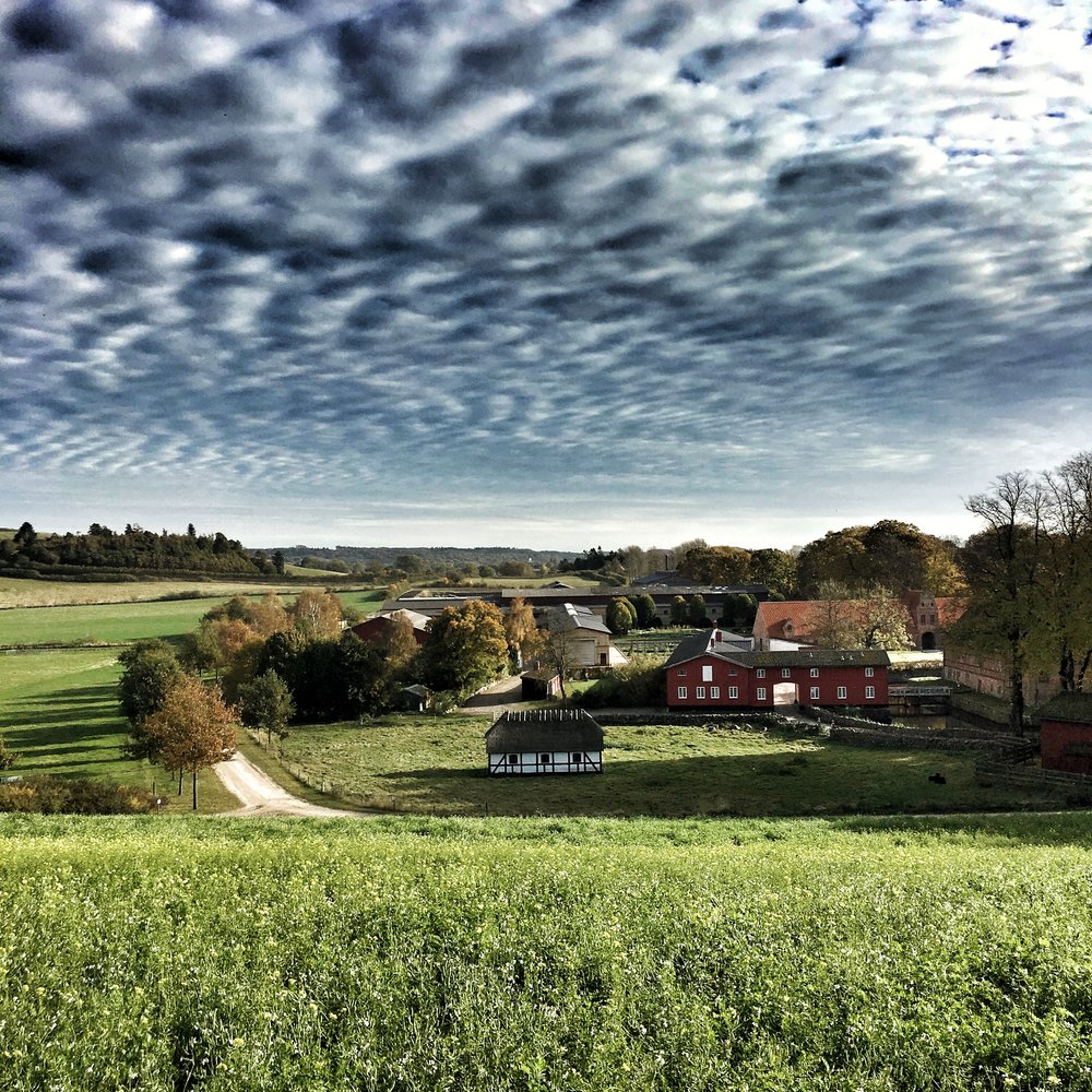 Steensgaard, an organic, self-sustainable farm on the island of Funen, Denmark.