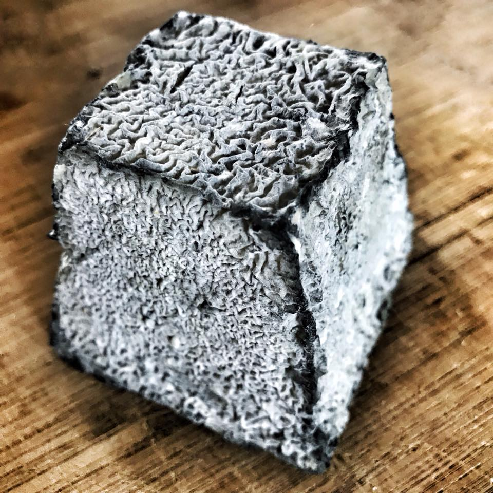 Valençay cheese that was coated with ash just after formation. A few months of fungal growth makes a really cool contrast!