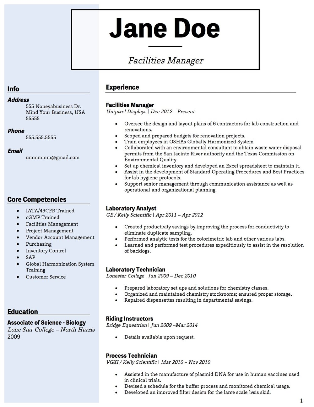 Client Resume #6 pg 1. Click to enlarge.