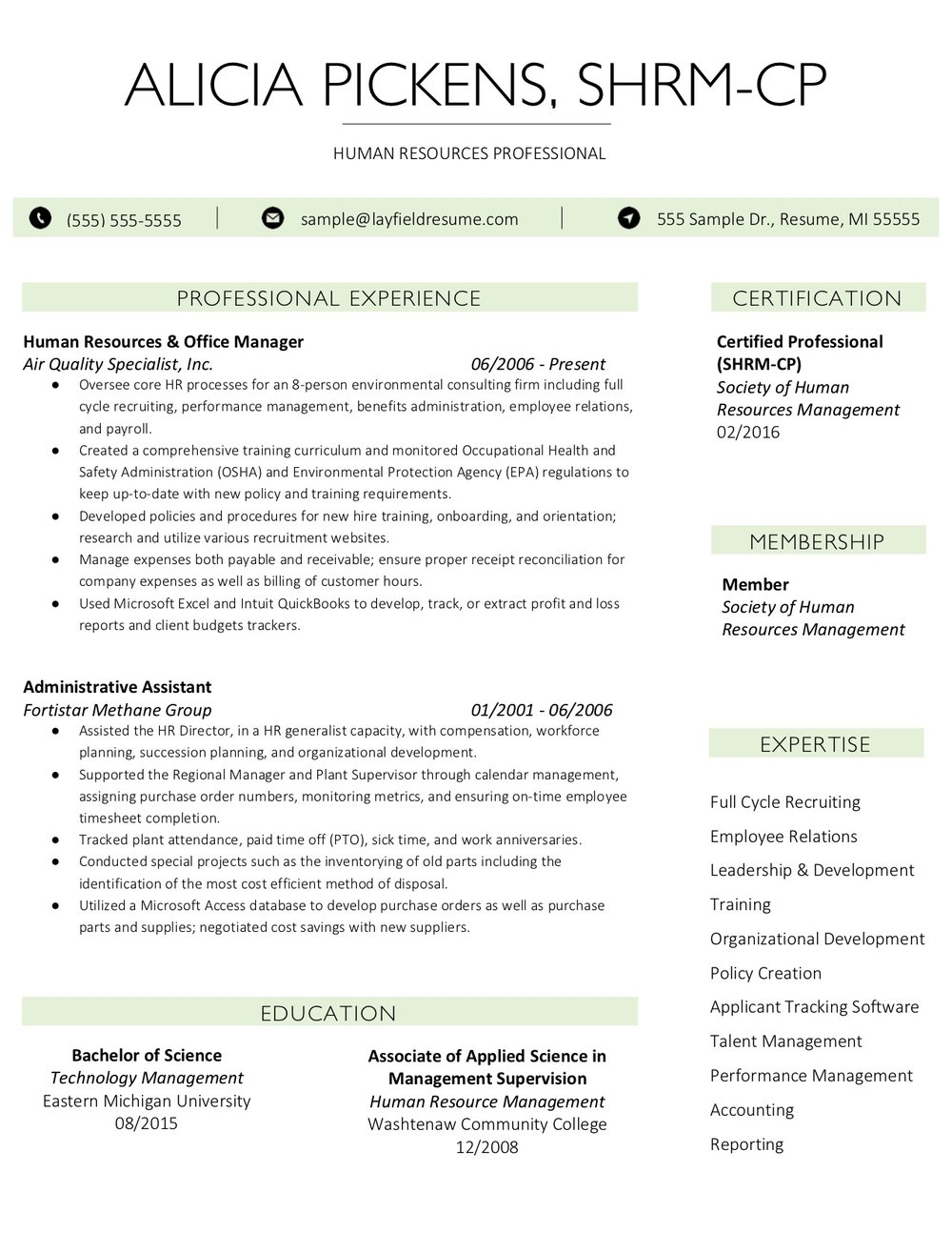 Client Resume #29. Click to enlarge.