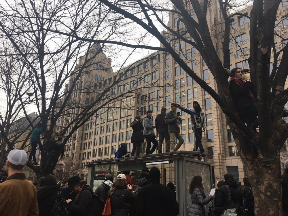 Protesters standing on bus stop rooftops and trees, K Street.