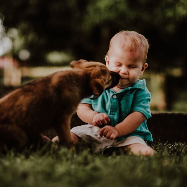 Not into puppy kisses 😂 - - - - - #adventuresofchildren #atdiff_kids #candidchildhood #celebrate_childhood #childhoodeveryday #childhoodunplugged #childofig #childrenseemagic #dpmagfaves #enchantedchildhood #follow_this_light #heaventhrumylens #illuminatechildhood #infinity_children #kidsforreal #let_there_be_delight #letthekids #letthemexplore #magicofchildhood #my_magical_moments #pixel_kids #kidsandpets #puppylove #belize