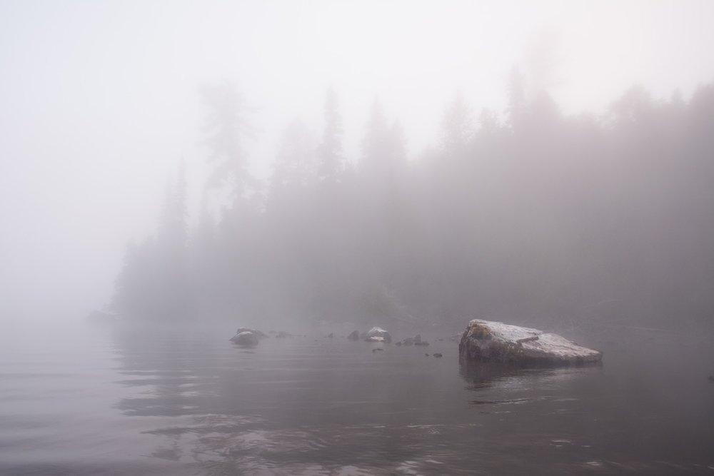Foggy Mist.jpg