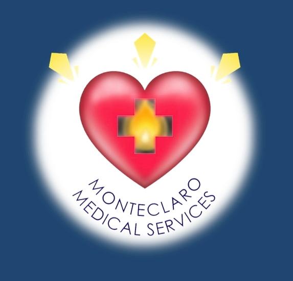 MMS Logo website red.jpg