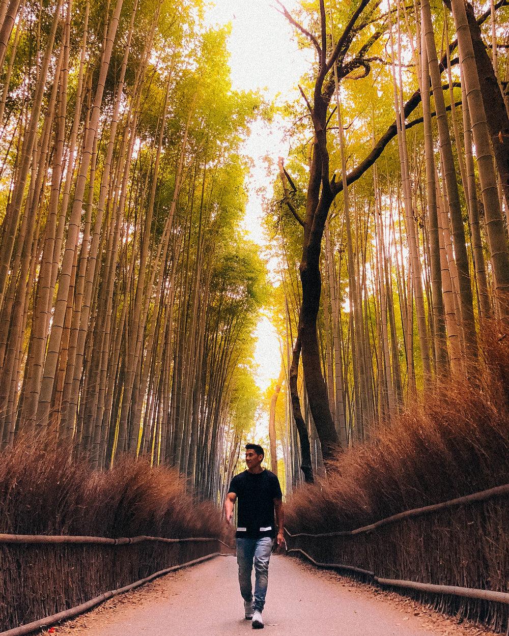 arashiyama bamboo forest -1.jpg