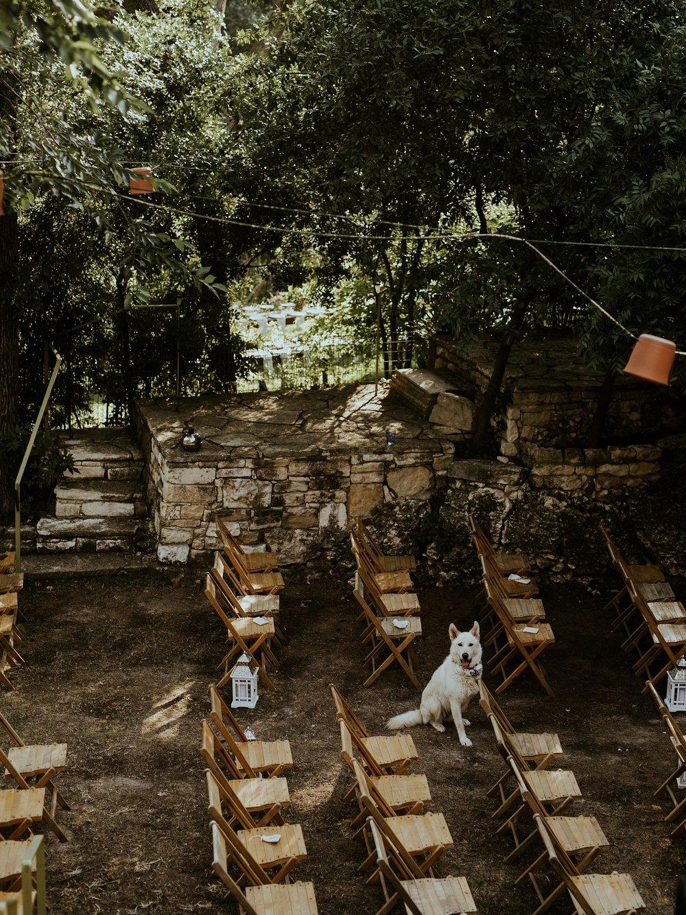 Vibrant Spring Wedding at the enchanting Jennifer's Gardens in Downtown Austin Texas_0029.jpg