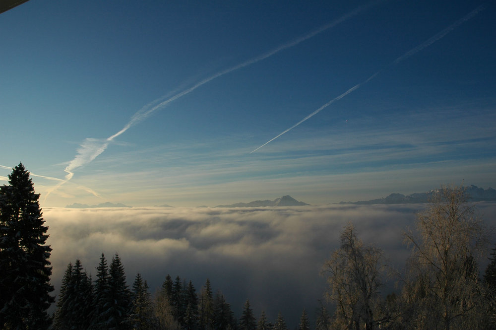 Panorama Winter Nebel.jpg