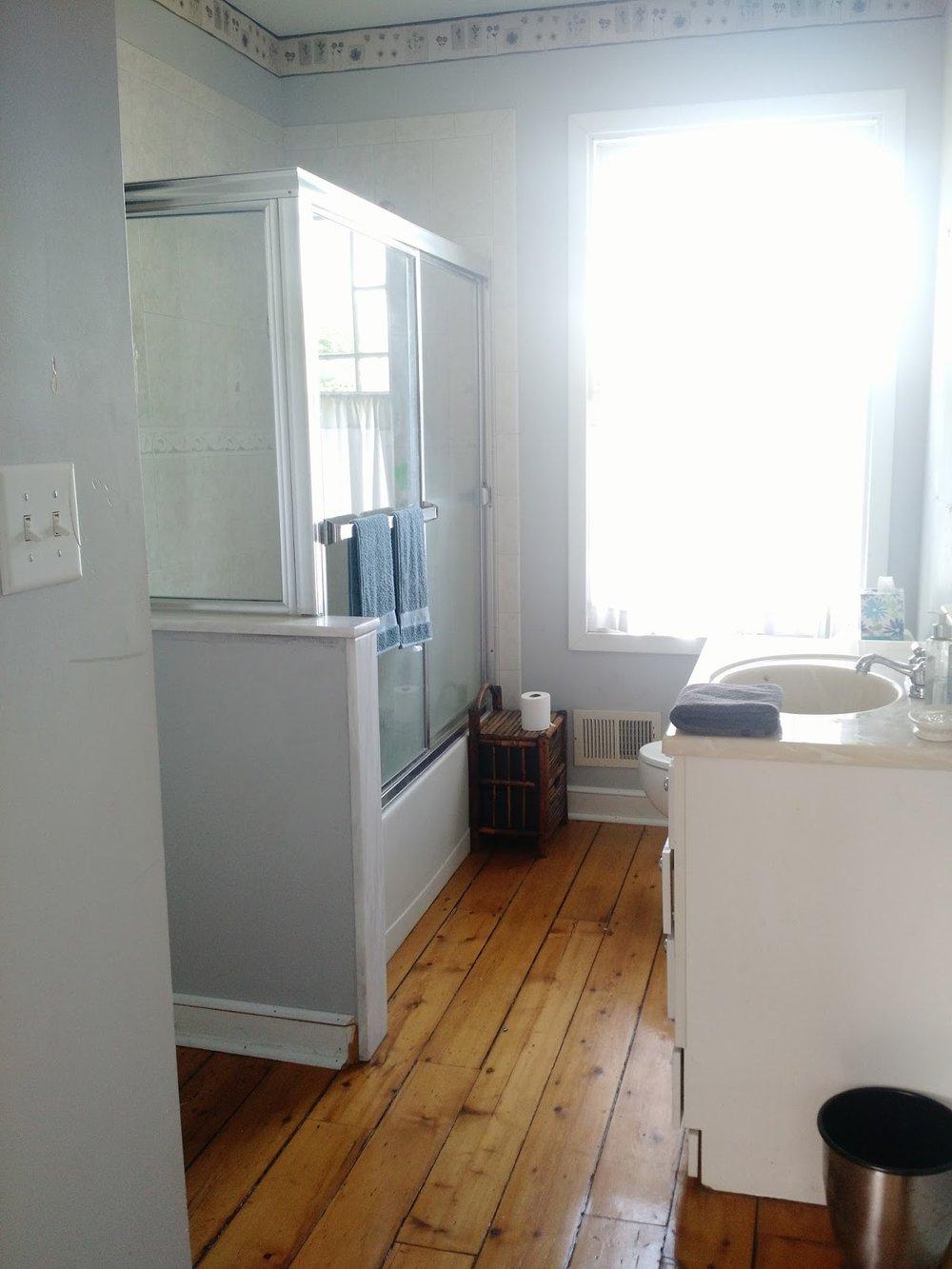 guest room 2 bathroom before.jpg