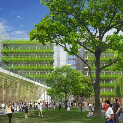 Image Credit: Rana Creek Design &Renzo Piano Building Workshop