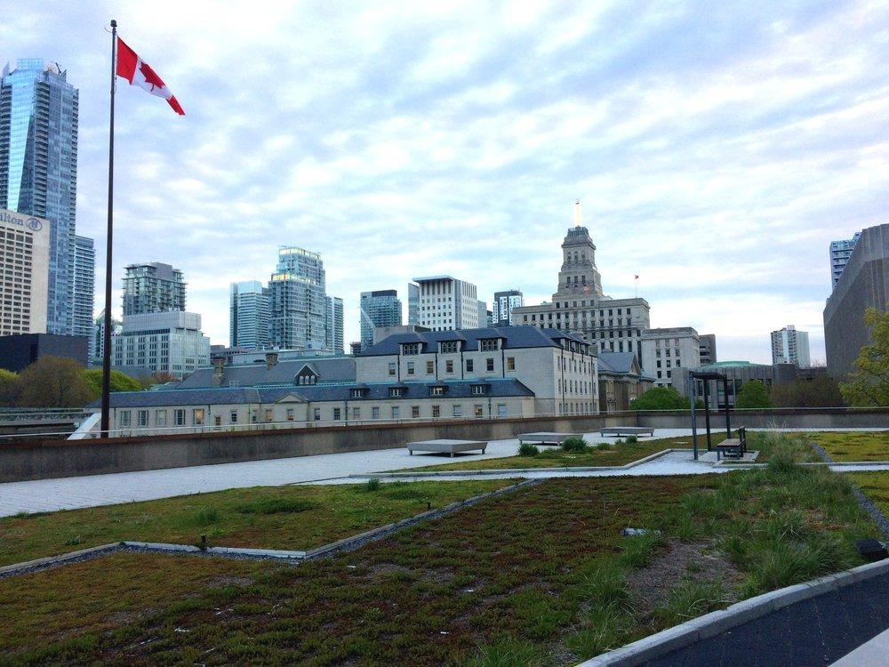 TorontoCityHall_g2g17_CreditEmmaT2.jpg