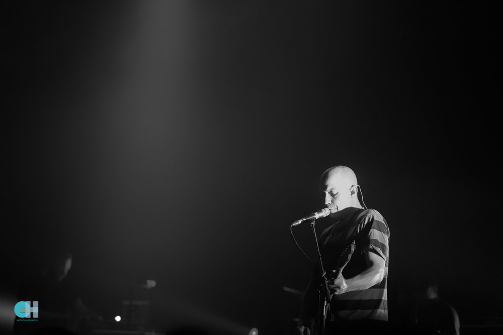 mogwai (9 of 14).jpg