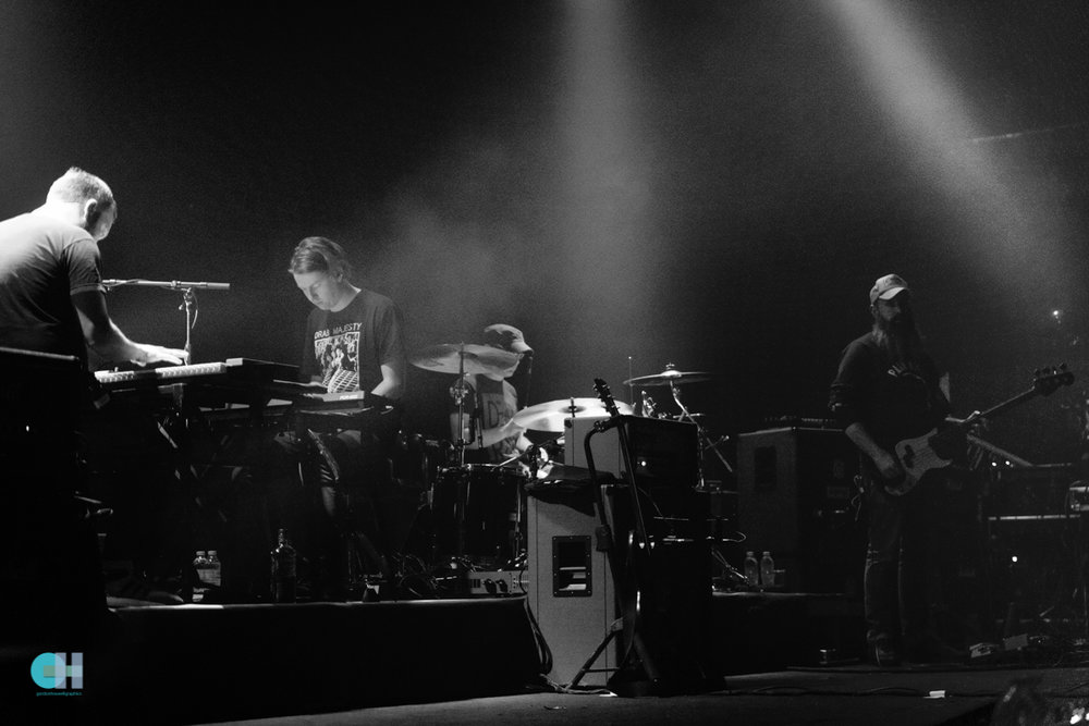 mogwai (1 of 14).jpg