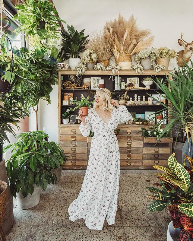 look at my plants, aren't they neat? wouldn't you think my collections complete? • • • HAHAHAH never 😈🤪🌵🌿🌱 check out my story for the newest plan baby I got! are you plant obsessed or do you prefer faux? #MaddyCorbinPresets