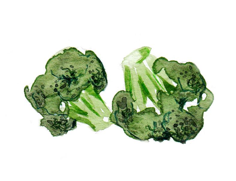 broccoli_study_final.jpg