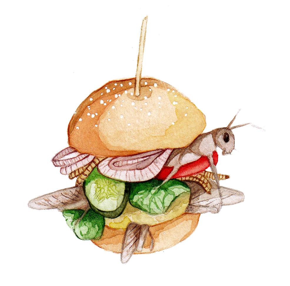 bugburger_final_scaled.jpg