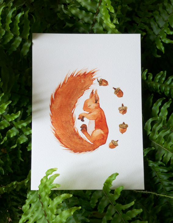 squirrel_and_acorn_shop.jpg