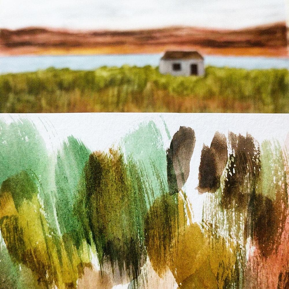 landscape_blog.jpg