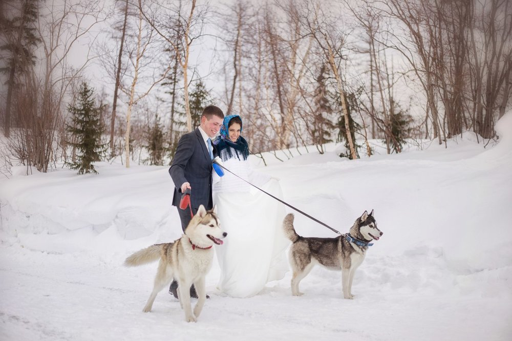 Norilsk - Russian couple in the snow wiht dogs