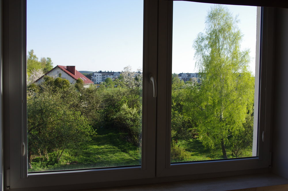 Window_view_with_green_trees_1.jpg