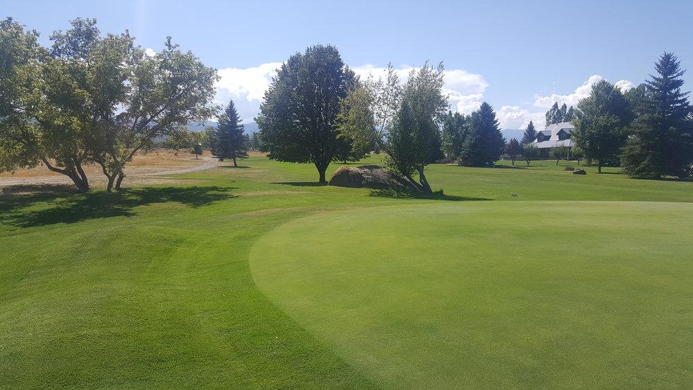 golf1 (9).jpg
