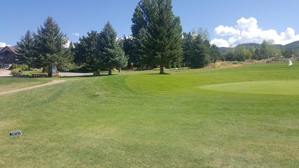 golf1 (13).jpg