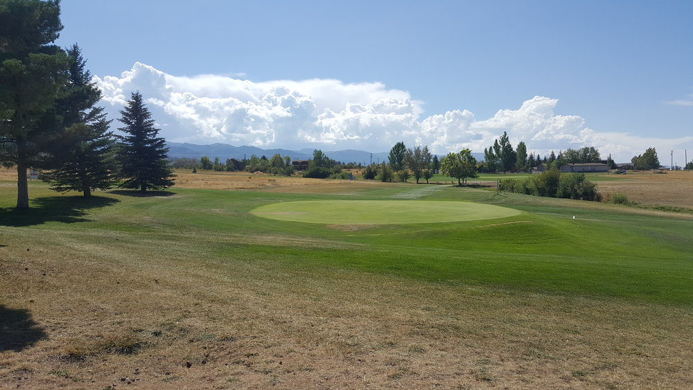 golf1 (15).jpg
