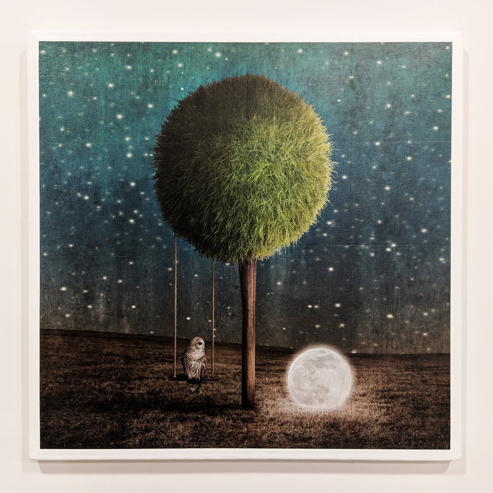 Tappy And The Moon gridded photograph on panel with gel medium 41 x 41 inches GNO 216G