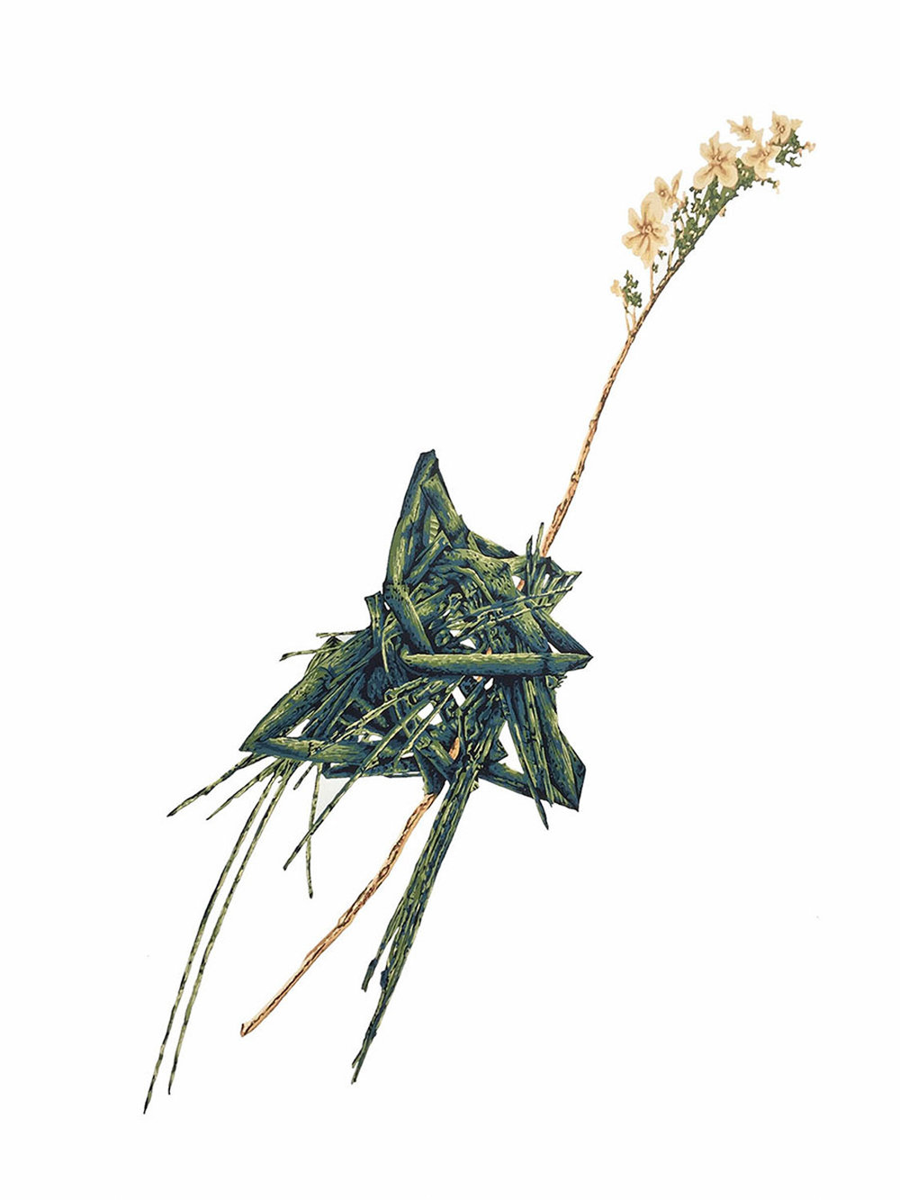 Heidi Almosara   Horsetail Knot with Flower Sliver  17-color Reduction Screen Print on Awagami Bamboo Select 20 x 14 inches, APS 200G