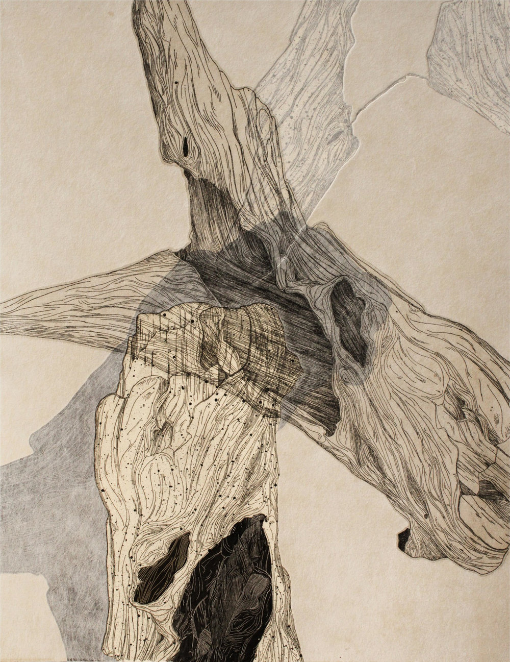 Emily Shopp   Smooth Surfaces  Intaglio, Relief, Chine-colle, Collage 18 x 14 inches, APS 251G