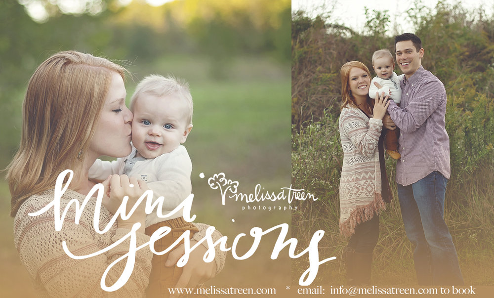 2017 fall mini sessions family .jpg