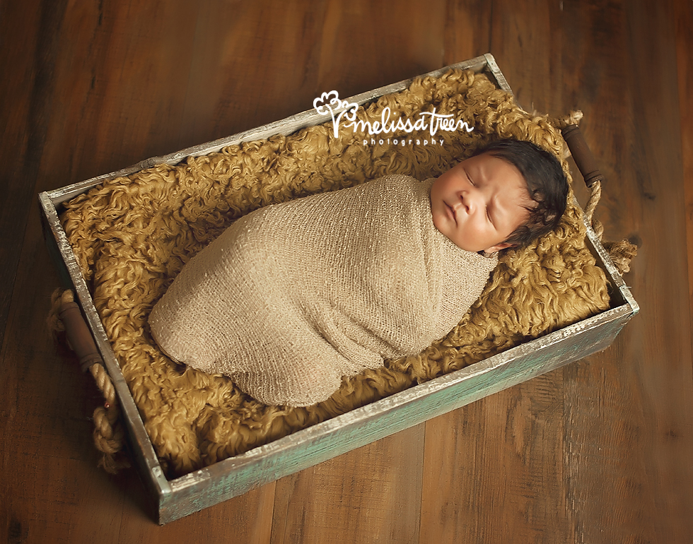 newborn baby photos high point north carolina portraits melissa treen photography.jpg