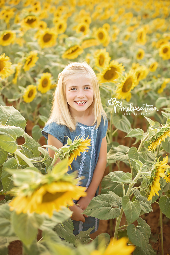 family-photographer-kernersville-northcarolina-sunflower-field.jpg